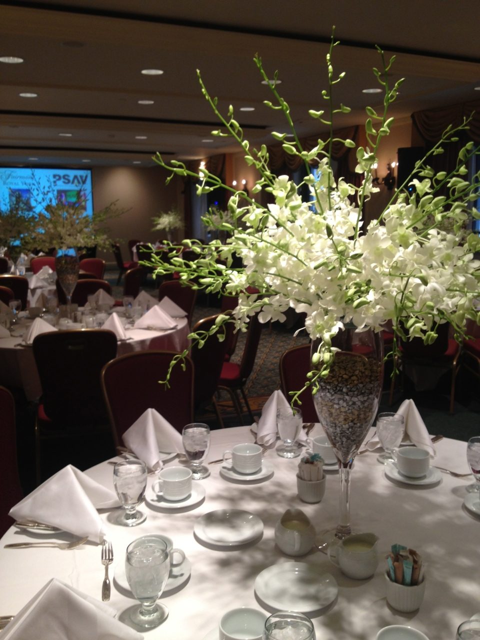 Tall centerpieces of white dendrobium orchids