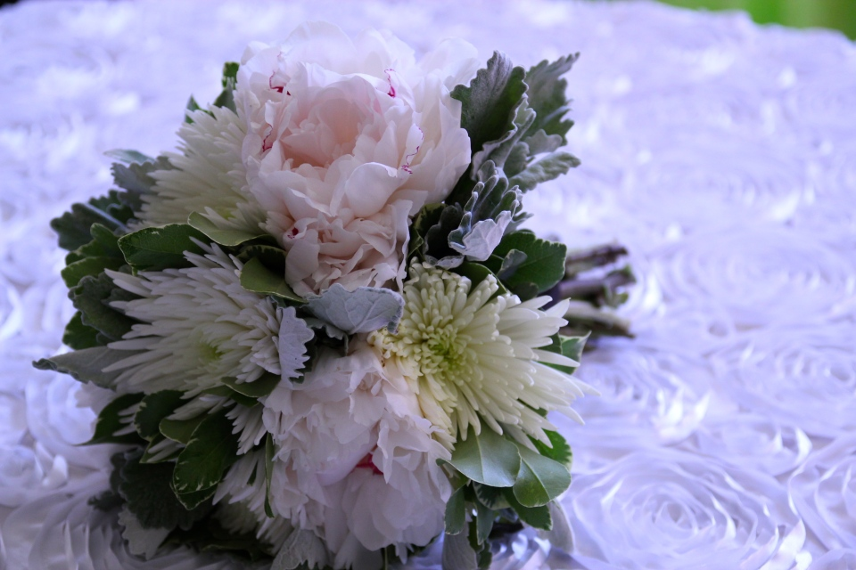 Bridesmaids bouquet of peonies, spider mums and dusty miller.
