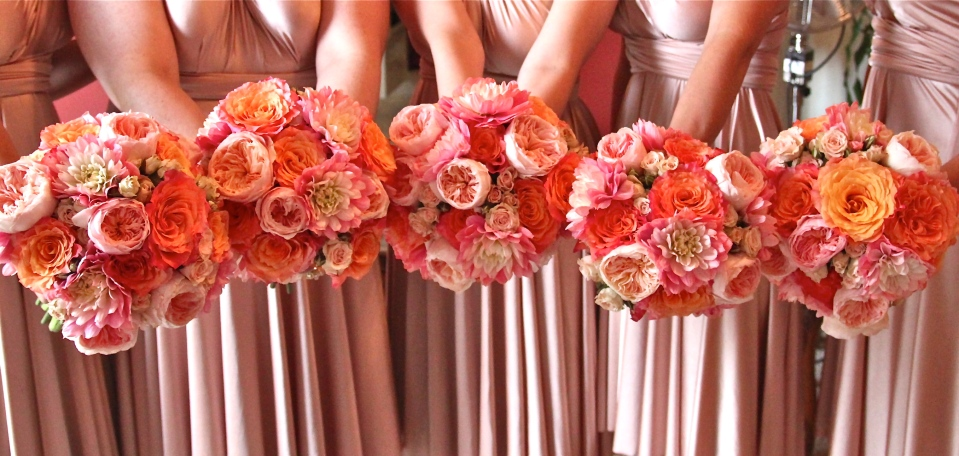Coral and peach bridesmaids bouquets of garden roses, spray roses & dahlias pop against the blush dresses