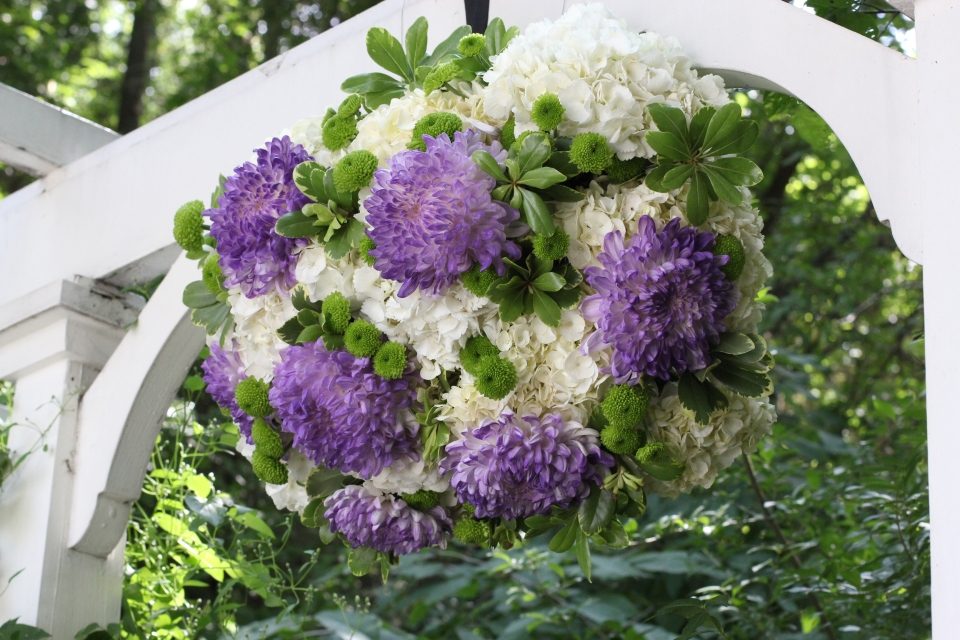 Trellis arrangement of purple mums & hydrangea