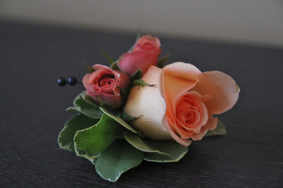 Peach rose boutonniere with spray roses and greenery detailing