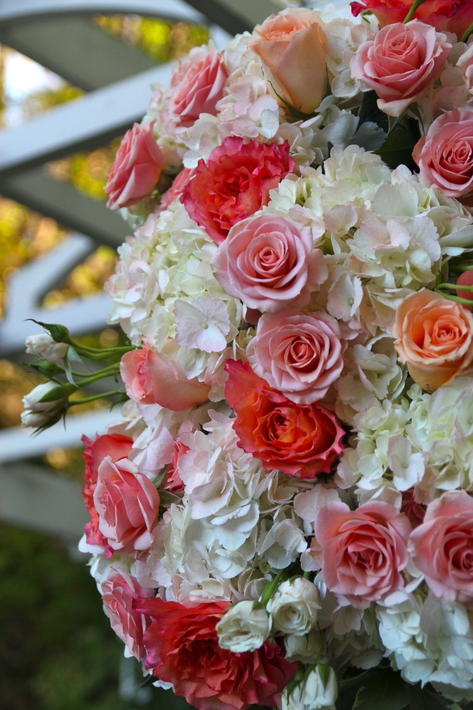 Trellis arrangements were loaded with hydrangea, roses and spray roses