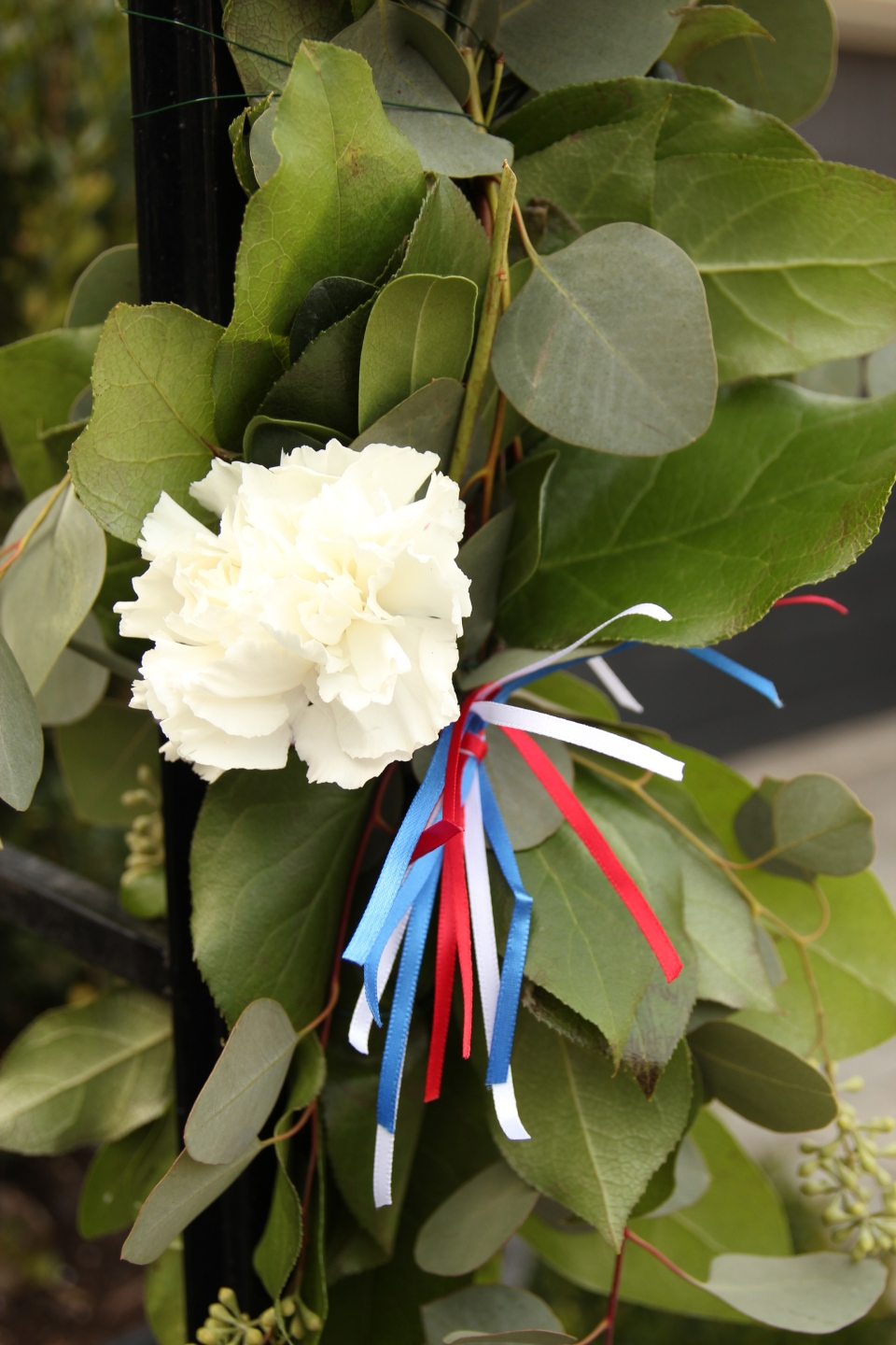 Serbian colours in ribbon for the archway
