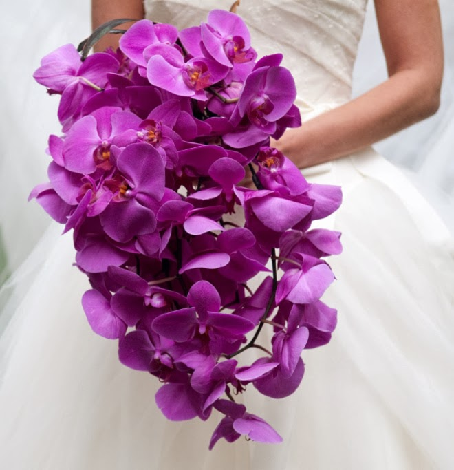 A cascade of phalenopsis orchids makes a simple an elegant bouquet choice for this colour option.