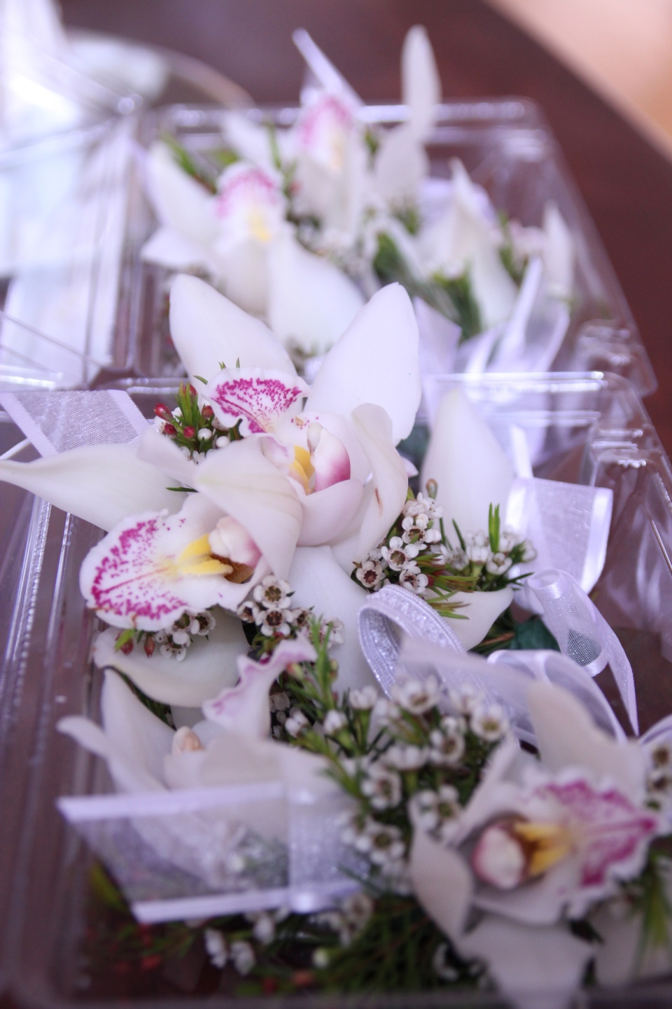 Cymbidium orchid and wax flower corages